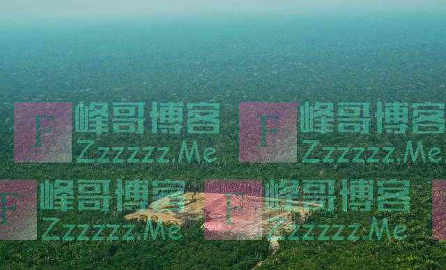 中国让地球更绿了!2019年造林1.06亿亩,卫星数据:日本几乎全绿