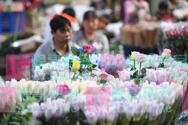 疫情下的情人节:百万玫瑰烂在地里,花店靠开滴滴给顾客送花