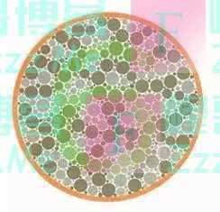 车管所认可的色盲图:认出最后一张的,基本上都是天才