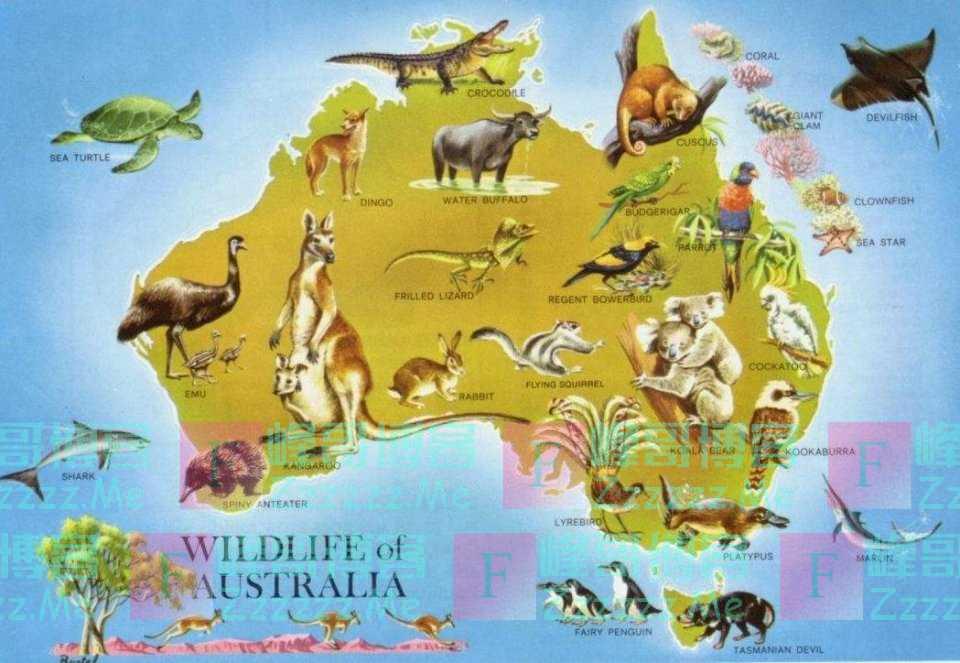 """远离世界其他大陆的""""澳大利亚大陆"""",有着怎样的气候特点?"""
