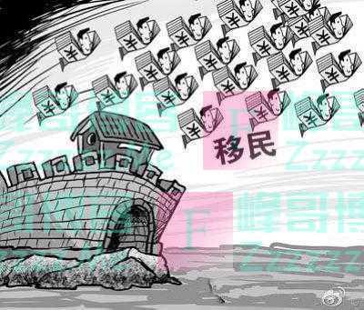 大批量华人返国,国外海关拦也拦不住