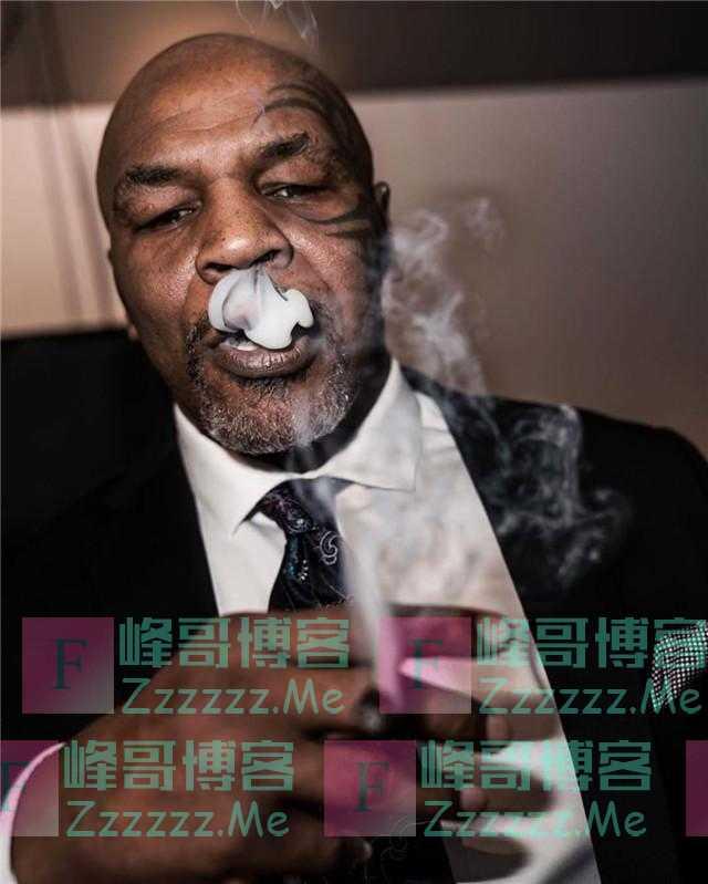 拳王泰森成大毒枭!每周吸食价值27万元大麻,经营243亩大麻农场