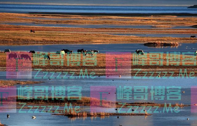 """世界第一""""偏心""""湖泊,中国66.6%全是淡水,邻国全是咸水!"""