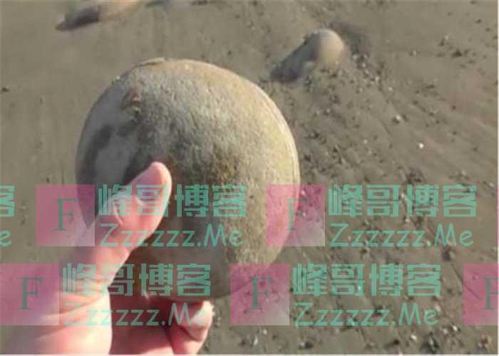 新西兰海滩的圆石头,男子在打磨8小时后,在里面有新发现!