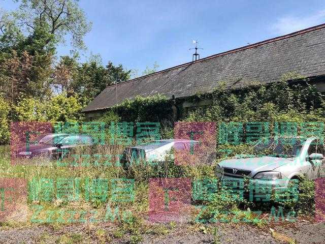 伦敦郊区发现被弃豪宅,门外的宾利已报废,屋里还有不少名牌衣服
