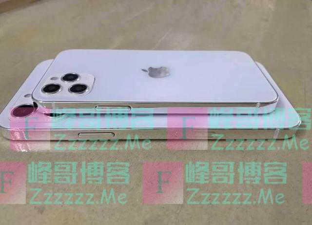 苹果要吃4G最后一波红利,上海某代工厂实锤,iPhone12有4G版本