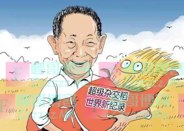 为什么全国95%的人,从来没有吃过袁隆平种的米?