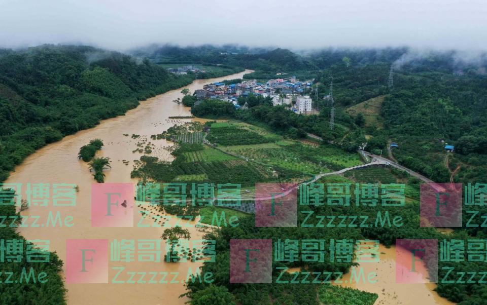 2020年洪灾又来了!持续强降雨,对粮食收成有什么影响?