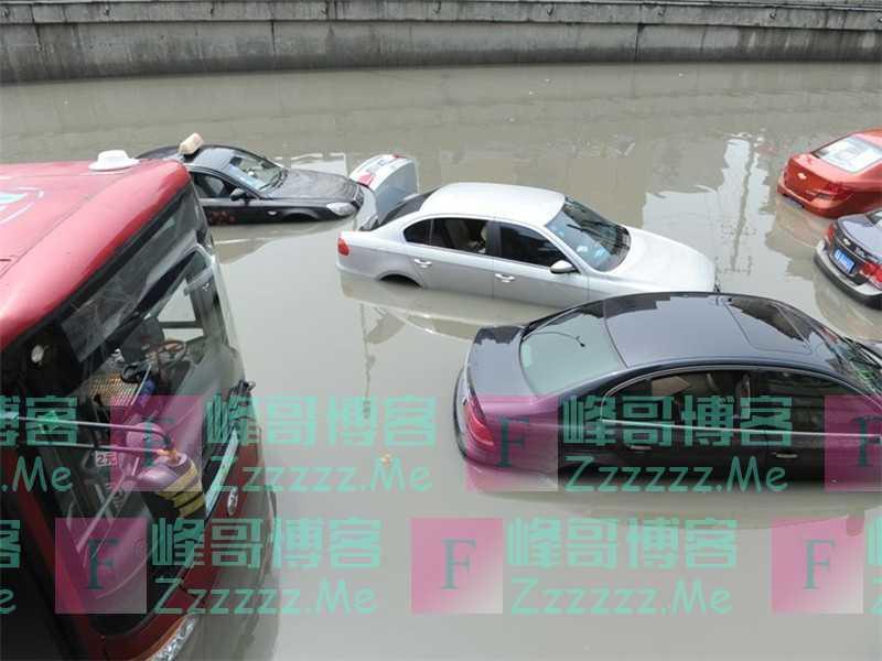 """暴雨天成车主""""摇钱树"""",保险公司哭了:赔的家底都不剩了!"""