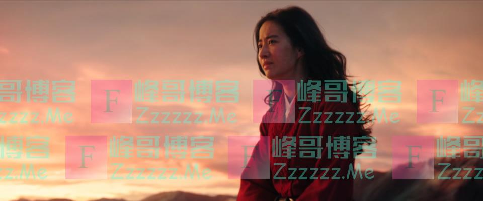 看完《花木兰》,我觉得中国故事不能给美国拍了