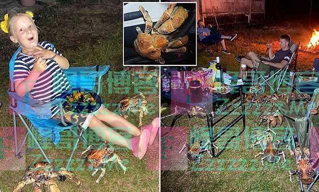 澳洲人家烧烤,52只巨蟹闻香而来将他们包围,网友:不烤蟹吃?