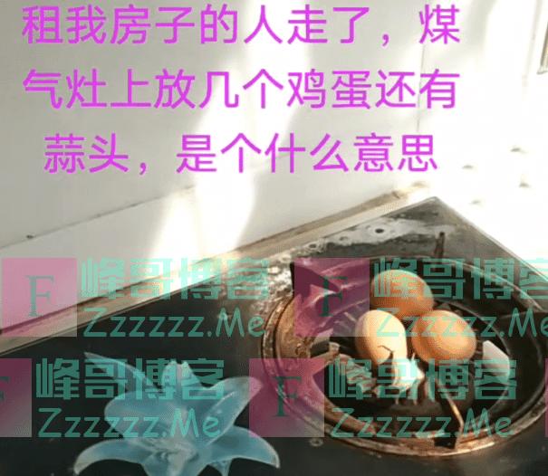 租我房子的人走了,煤气灶上放鸡蛋还有蒜头,是想暗示我什么?