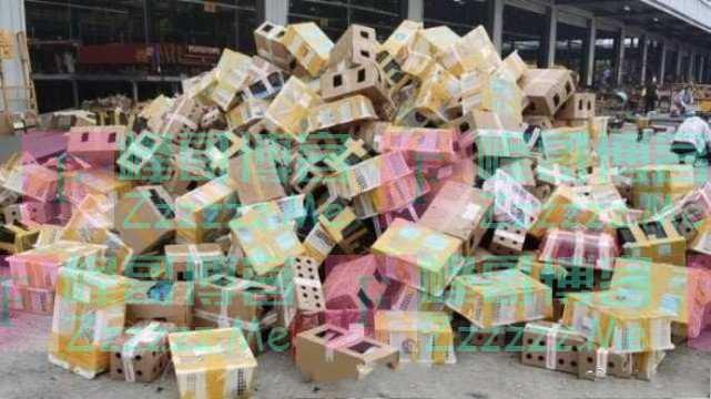 近万只宠物滞留物流园死亡,疑似快递包装均为韵达快递,官方回应