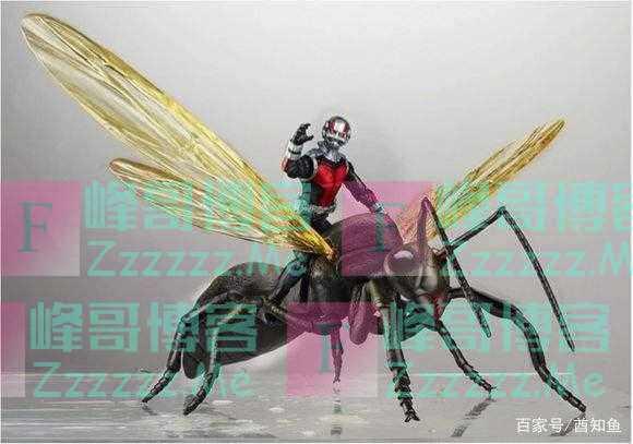 人类如果突然变成蚂蚁那么大,但保留智慧,会发生什么?