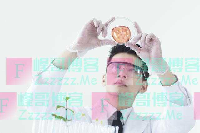 中国人是不是世界上最聪明的呢?全球智商排行榜