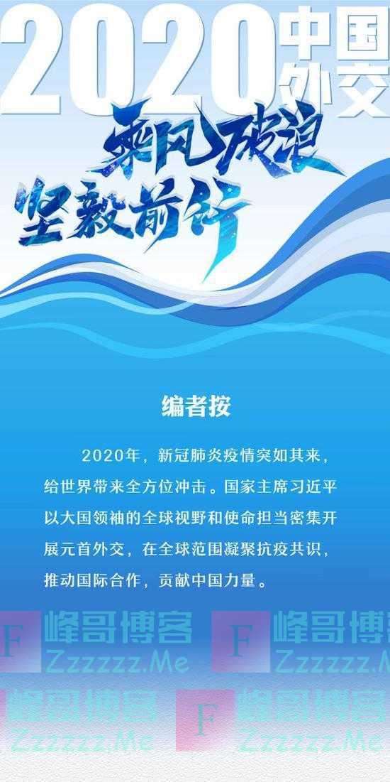 2020年中国外交乘风破浪坚毅前行