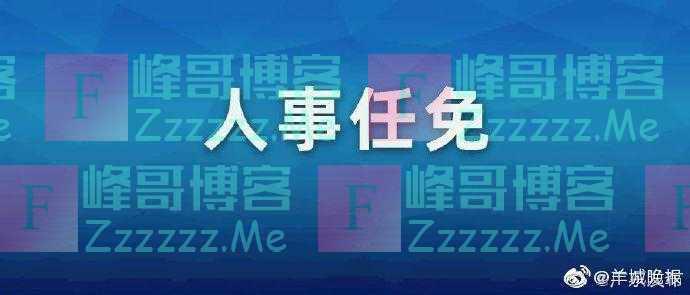 广东省人民政府任免工作人员