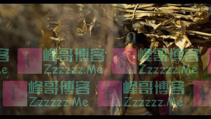 新华社纪录片《中国减贫密码》上线
