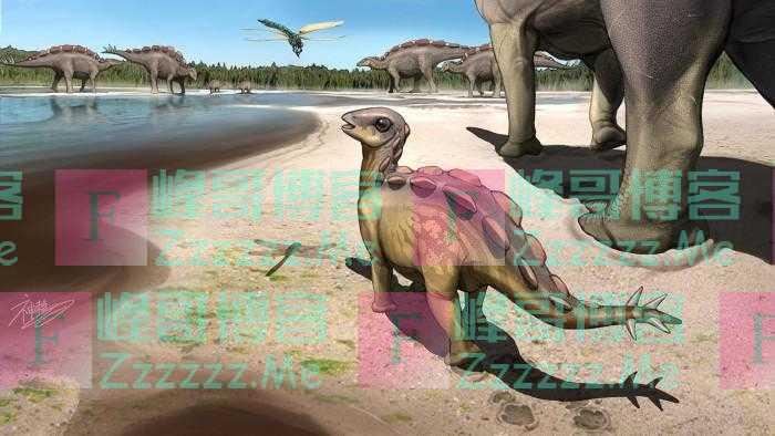 古生物学家发现一个跟猫相当大小的恐龙足迹