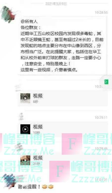 广州一高校有近2米长眼镜王蛇出没?校方紧急处置