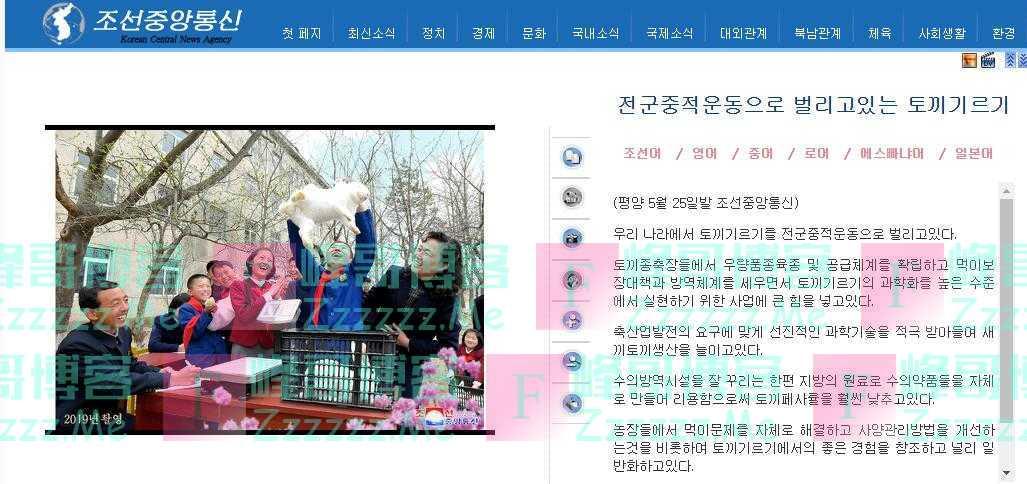朝中社:朝鲜大力开展群众养兔运动