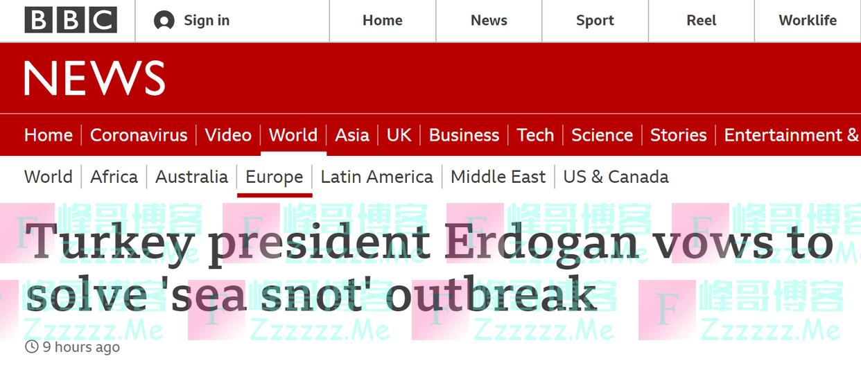 """场面惊人!""""海鼻涕""""在土耳其肆虐,总统埃尔多安敦促调查"""