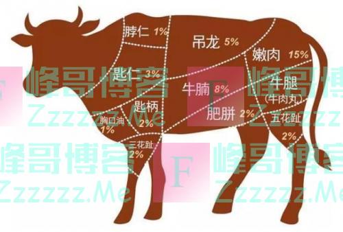 胖当家大块牛肉酱:极致的鲜味,让每一餐变得更享受