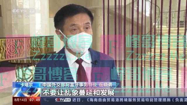 中国外交部阿富汗事务特使:美国理应受到国际舆论和国际社会的谴责