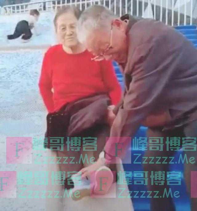 爷爷奶奶们的日常有多美好?网友:没点儿特长都不敢退休了