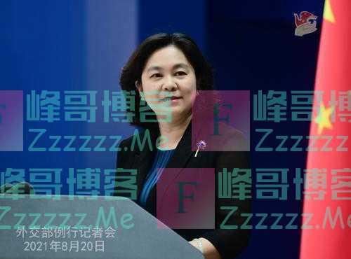 华春莹:民主不是可口可乐全世界一个味 很多中国人喜欢北冰洋