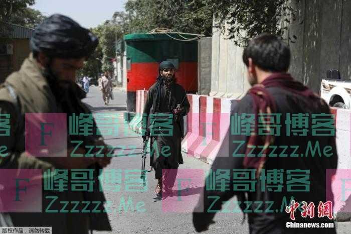 美媒:美国中情局局长在喀布尔秘密会见塔利班领导人