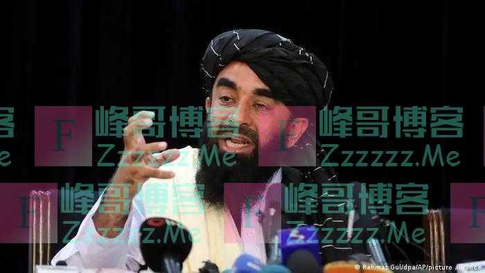 """德媒:塔利班发言人称,中国是阿富汗""""走向全球市场的通行证"""""""