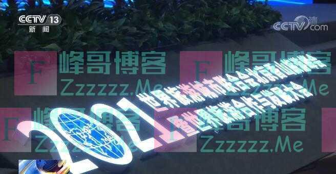 上海、北京旅游数据表现大幅领先全球