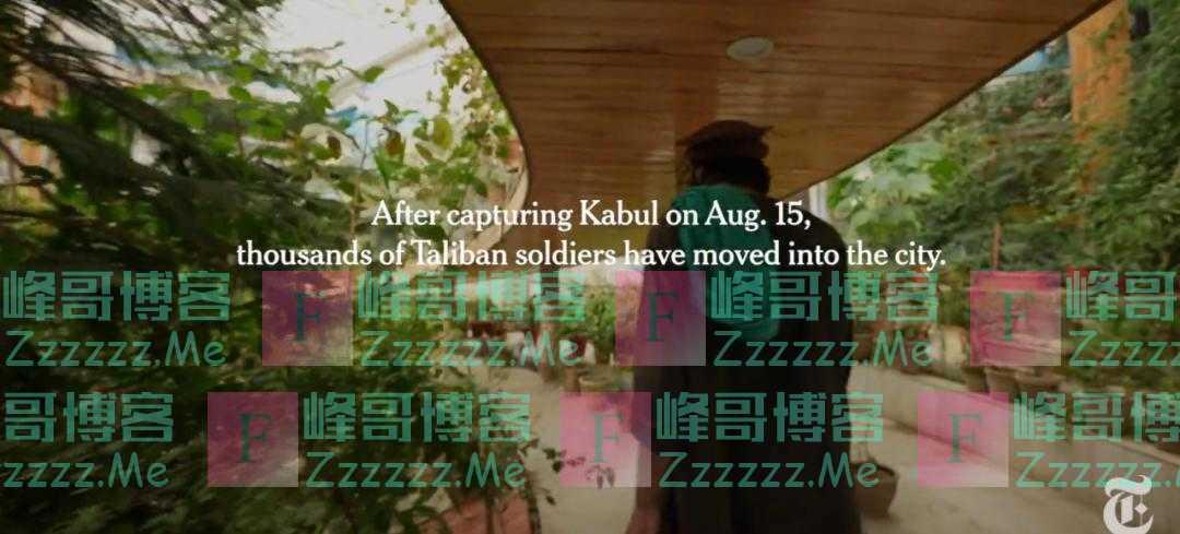 《纽约时报》跟着塔利班拍阿富汗前副总统豪宅,让美国网民破防了
