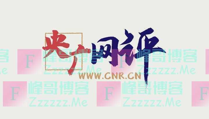 「央广网评」屡上热搜的第八次国务院大督查呼唤 长效督查永不落幕
