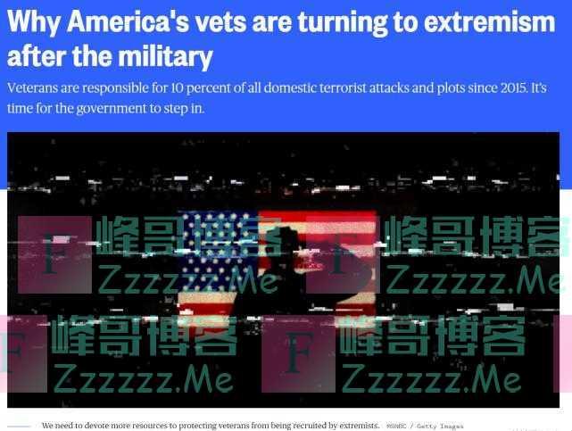 美媒:美退伍军人走向极端主义!6年来发动10%本土恐袭
