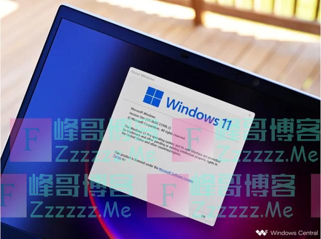 Windows11系统中文汉化补丁 Windows11设置中文方法